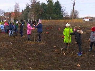 Osnovci iz Nakova posadili 86 sadnica